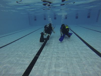 SCUBA Scouts Experience